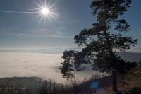 Dezembernebel über der Wachau