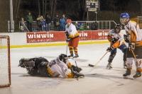 21.02.2015 Benefizeishockeyturnier