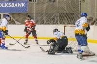Benefizeishockeyturnier_5
